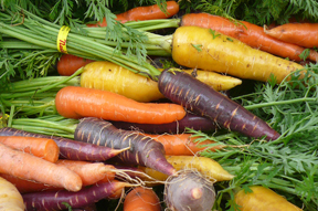 colorful carrots.jpg