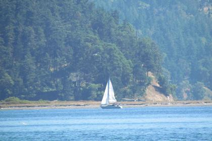 Sailboat at Port Williams