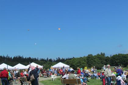 Kites over the Park