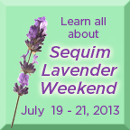 lavender weekend