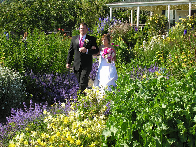 Wedding at The Cutting Garden