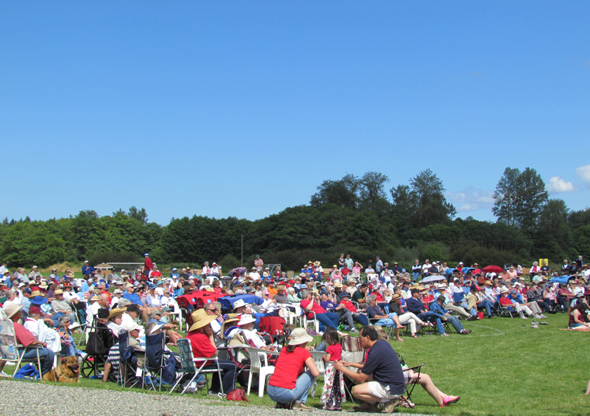 crowd at music in the park